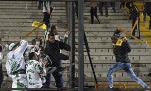 Palmeiras02