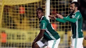 Palmeiras03