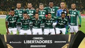 Palmeiras05